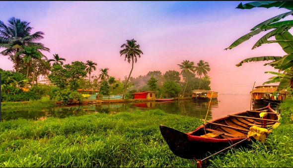 Munnar-Thekkady-Wayanad Tour Package